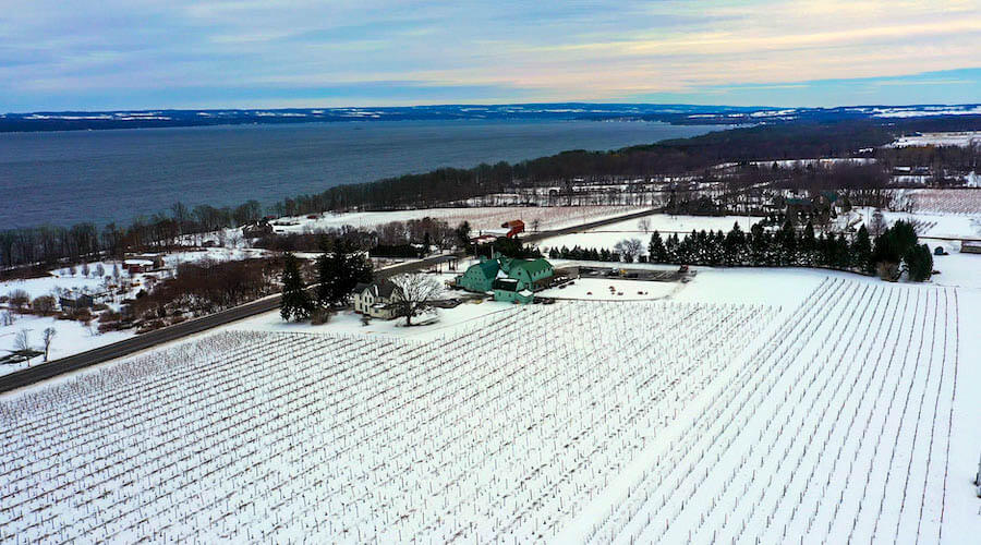 fox run winery in finger lakes new york