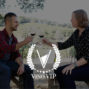 become vip of v is for vino wine show