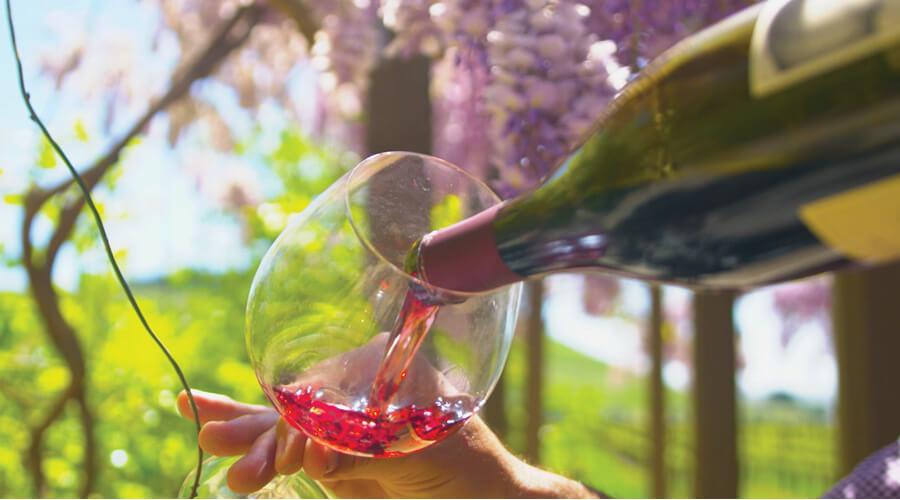 j wilkes winery in santa barbara